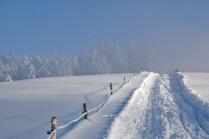 winter-road