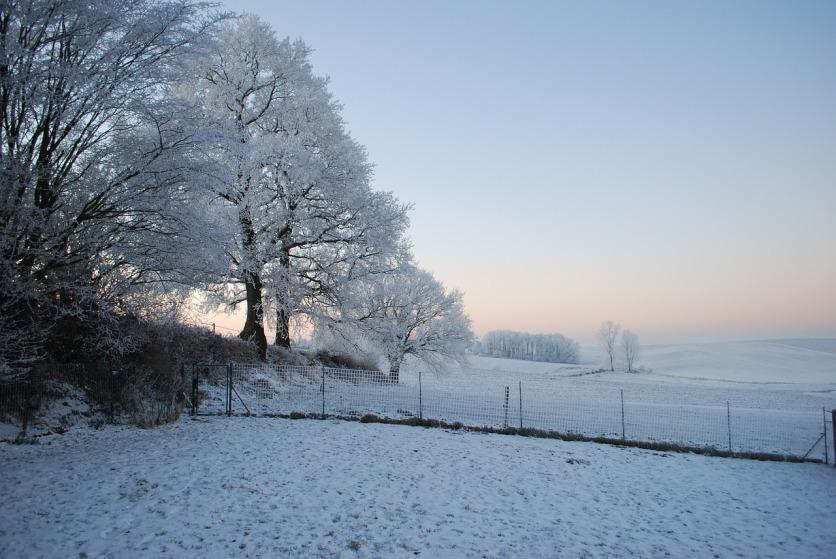 winter-fence-1280